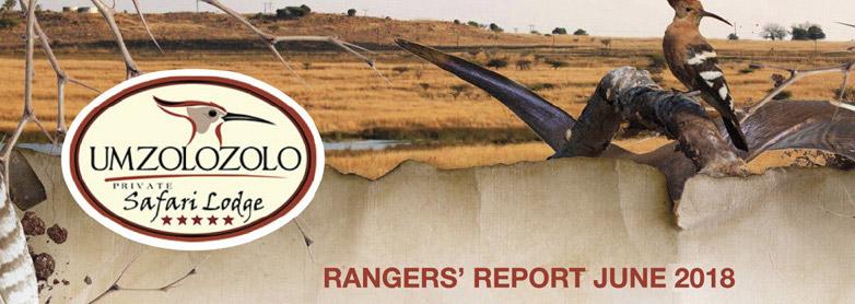 ranger-report-june