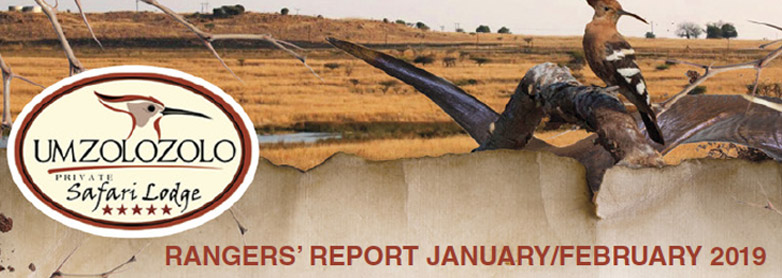 RANGERS-REPORT-JANUARY-FEBRUARY-2019