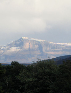 entabeni-snow-capped-peak-midlands-conservancies-forum