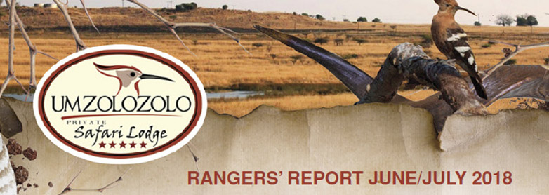 Rangers Report June – July 2018